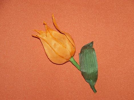Тюльпан Китайский фонарик 4