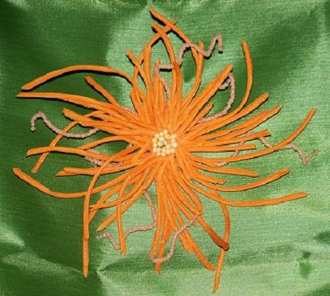 Хризантема Пламя 3