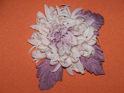 Хризантема 3
