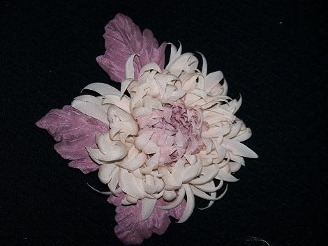 Хризантема 4