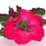 Цветы броши шелк натуральный Япония. Украшения ручной работы.