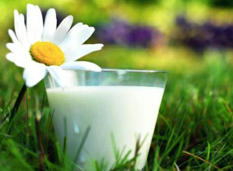 Выбираем коровье молоко себе. Виды коровьего молока для человека.
